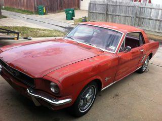 1966 Mustang photo