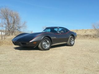 1976 Chevrolet Corvette Stingray W / T - Tops photo
