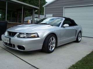 2004 Ford Mustang Svt Cobra Convertible photo