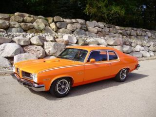 1974 Gto. . . .  The Last Of The Goats photo