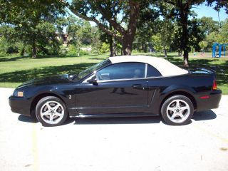 Rare,  2001 Mustang Cobra Convertible,  131 Made,  Car Show Vehicle,  Drive Anywhere photo