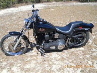 1999 Harley Davidson Softail photo