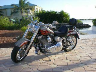 2006 Harley Davidson Flstfse2 Screamin Eagle photo