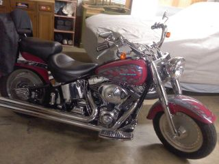 2002 Fat Boy Limited Edition Paint Job photo