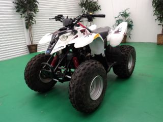 2006 Polaris Predator 90 photo