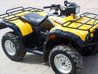 2003 Honda Honda ' S Premier Workhorse - The Rubicon 500 photo