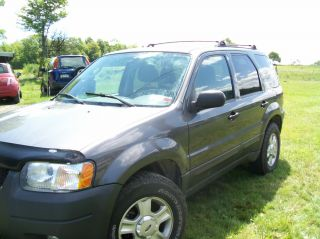 2004 Ford Escape Xlt Sport Utility 4 - Door 3.  0l photo