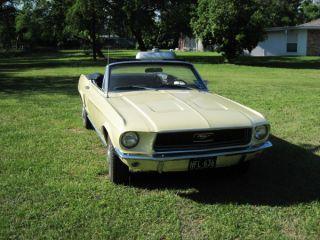 1968 Mustang Convertible photo