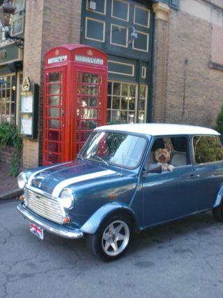 Classic 1986 Mini Mayfair (like Cooper) photo