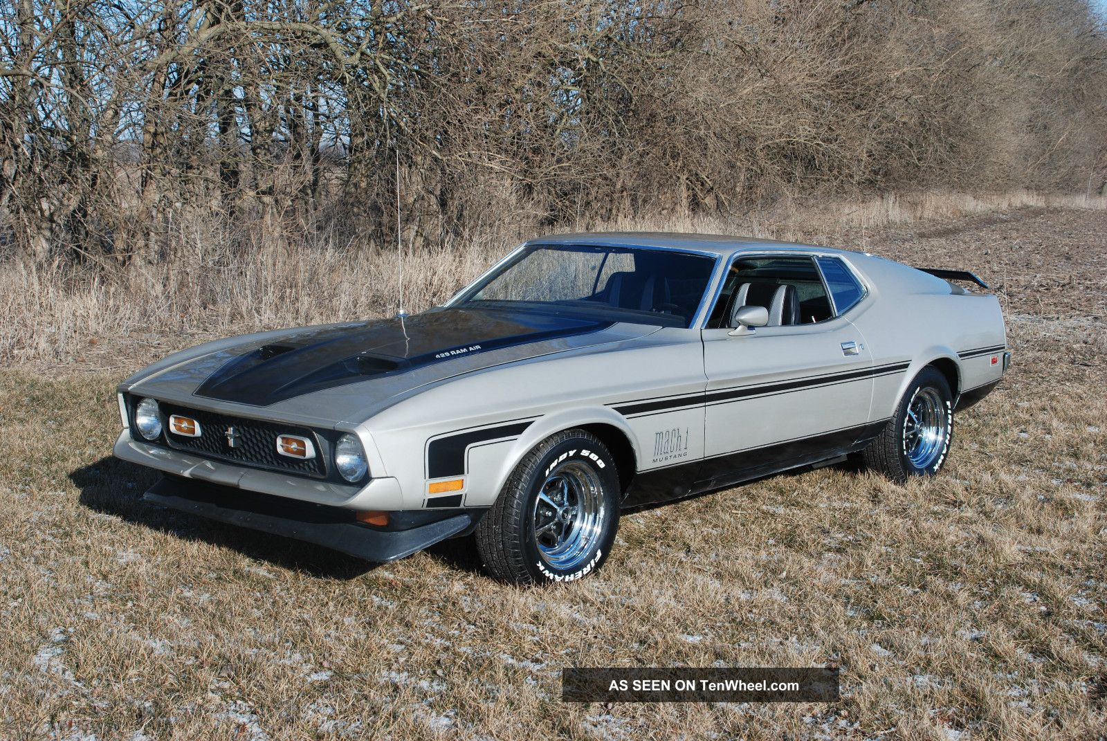 1971 ford mustang mach 1 429 cobra jet mustang photo. Cars Review. Best American Auto & Cars Review