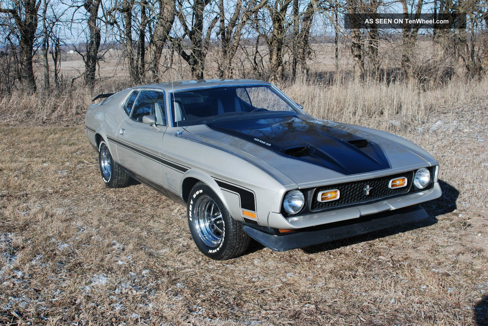 1971 ford mustang mach 1 429 cobra jet mustang photo 2. Cars Review. Best American Auto & Cars Review