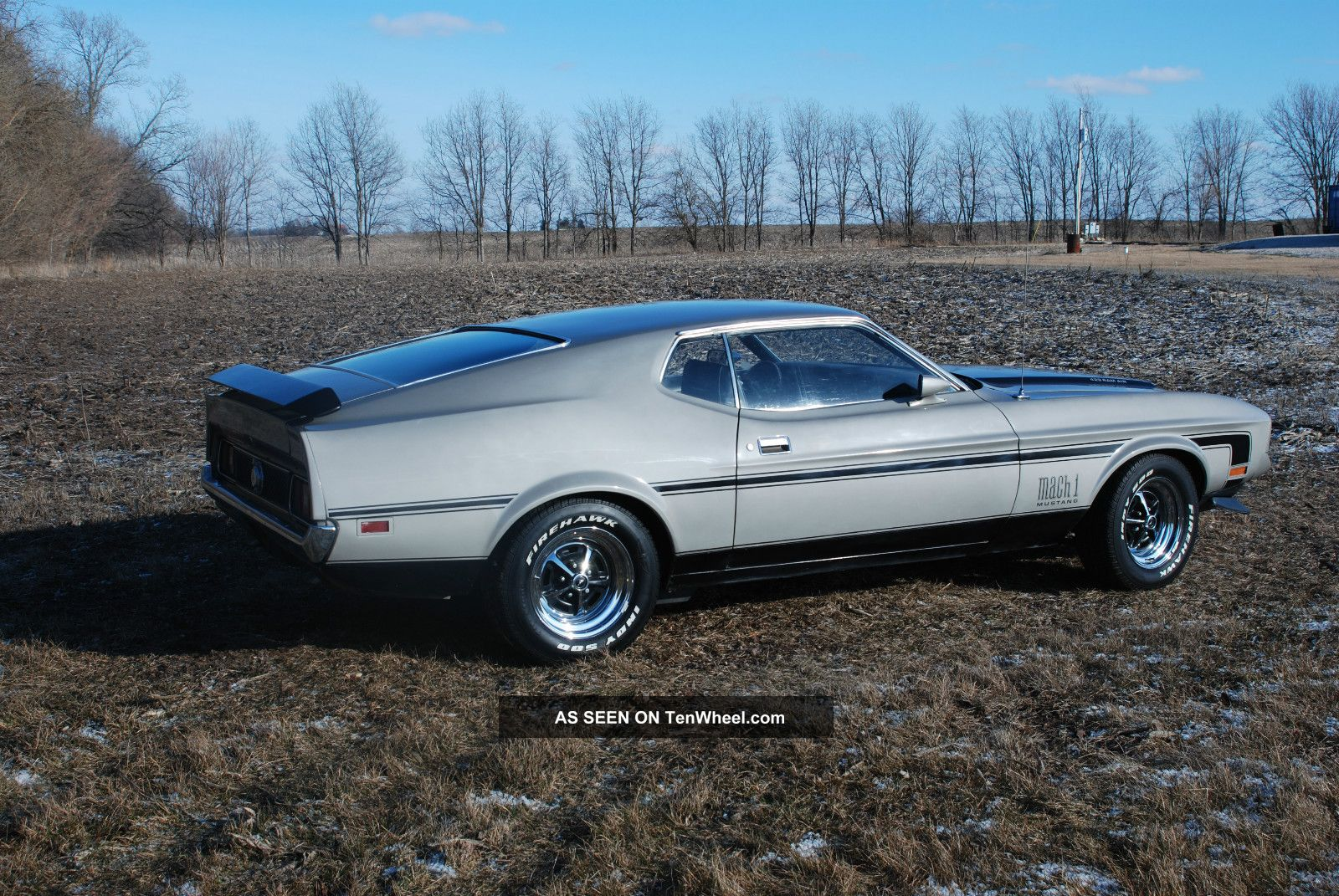 1971 ford mustang mach 1 429 cobra jet mustang photo 3. Cars Review. Best American Auto & Cars Review