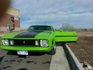 Fotd Mustang 1973 photo
