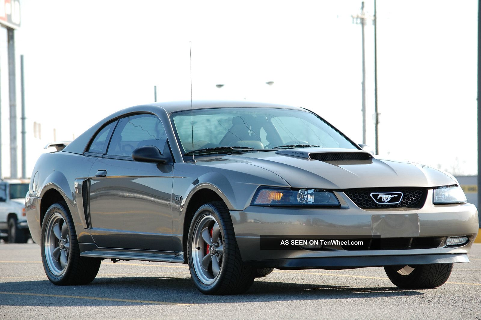 2002 Ford Mustang Gt Coupe 2 - Door 4.  6l Mustang photo
