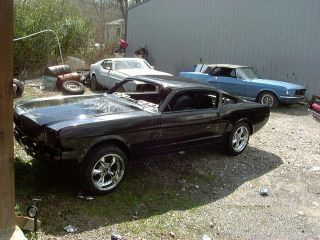 1966 Mustang Fastback 2+2 photo