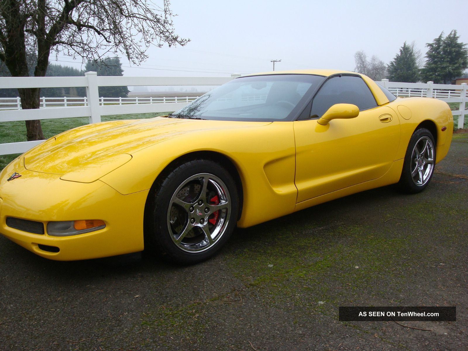 Striking Yellow 2001 C5 Corvette 6 Speed American Sports