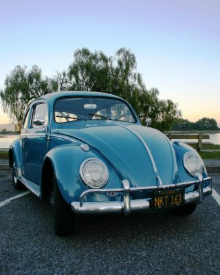 1963 Vw Beetle - All California Car - Unrestored - Nr photo