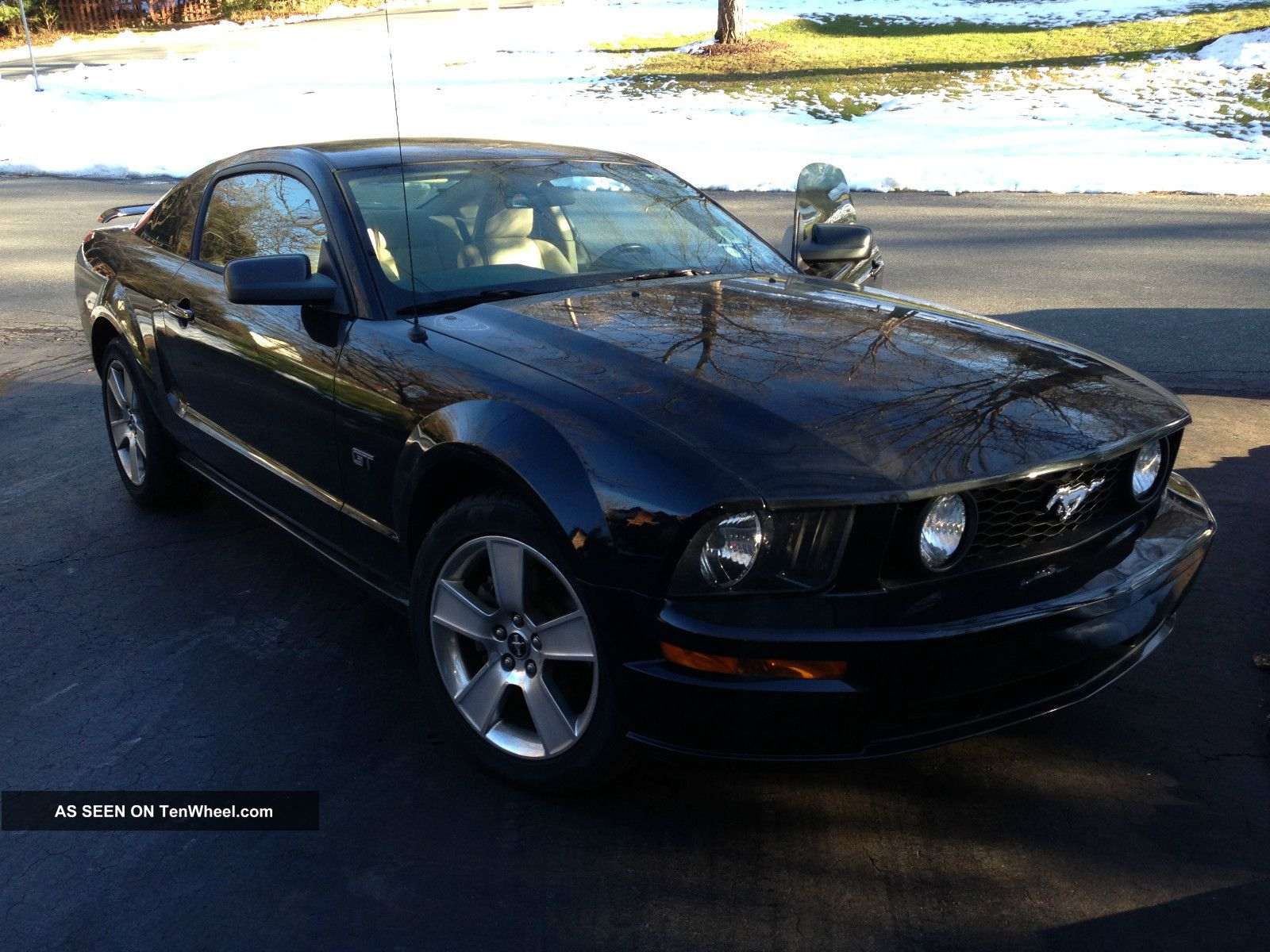 2006 Ford Mustang Gt Coupe 2 - Door 4.  6l Mustang photo