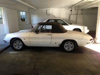 1967 Alfa Romeo Duetto 2l.  Turbo photo