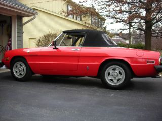 1982 Alfa Romeo Spider Ferrari Red photo