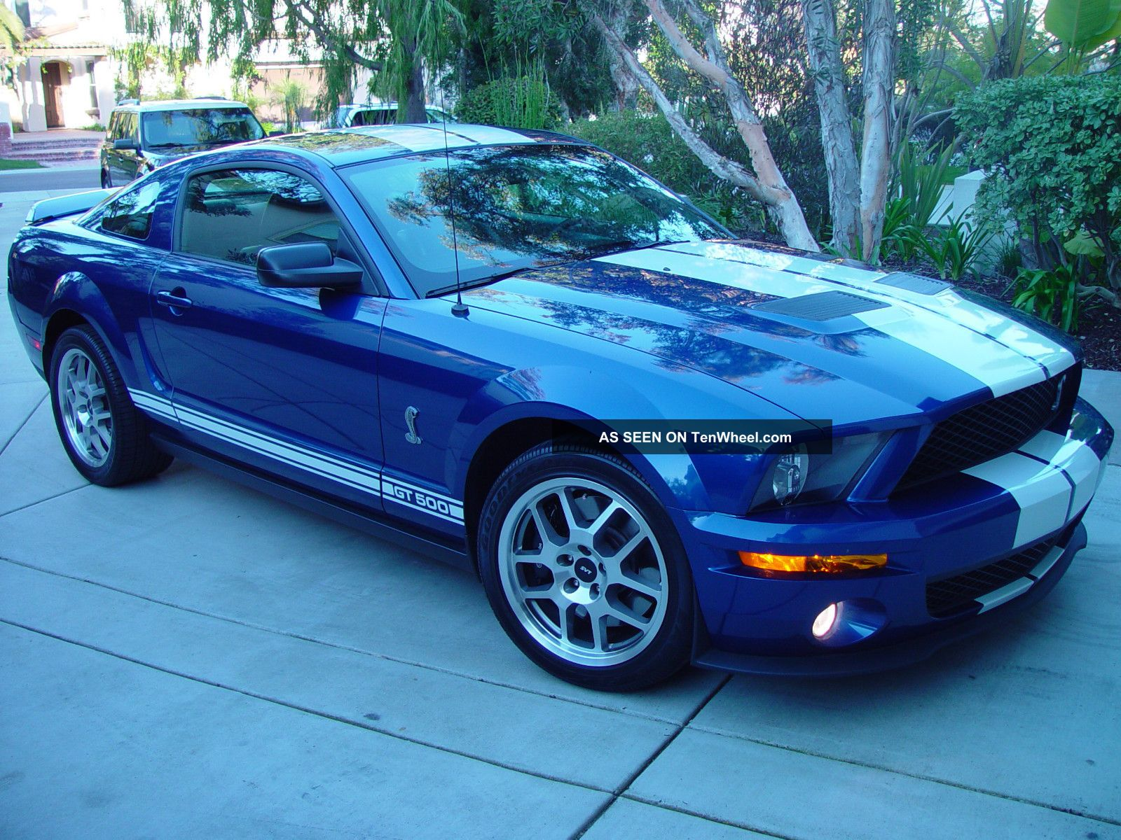 2008 ford mustang shelby gt500 coupe 2 door 5 4l. Black Bedroom Furniture Sets. Home Design Ideas
