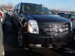 2012 Cadillac Escalade Esv photo