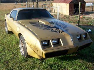1979 Gold Trans Am Firebird photo