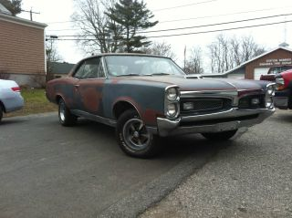 1967 Pontiac Gto Restoration Project: Very Solid And Straight Car photo