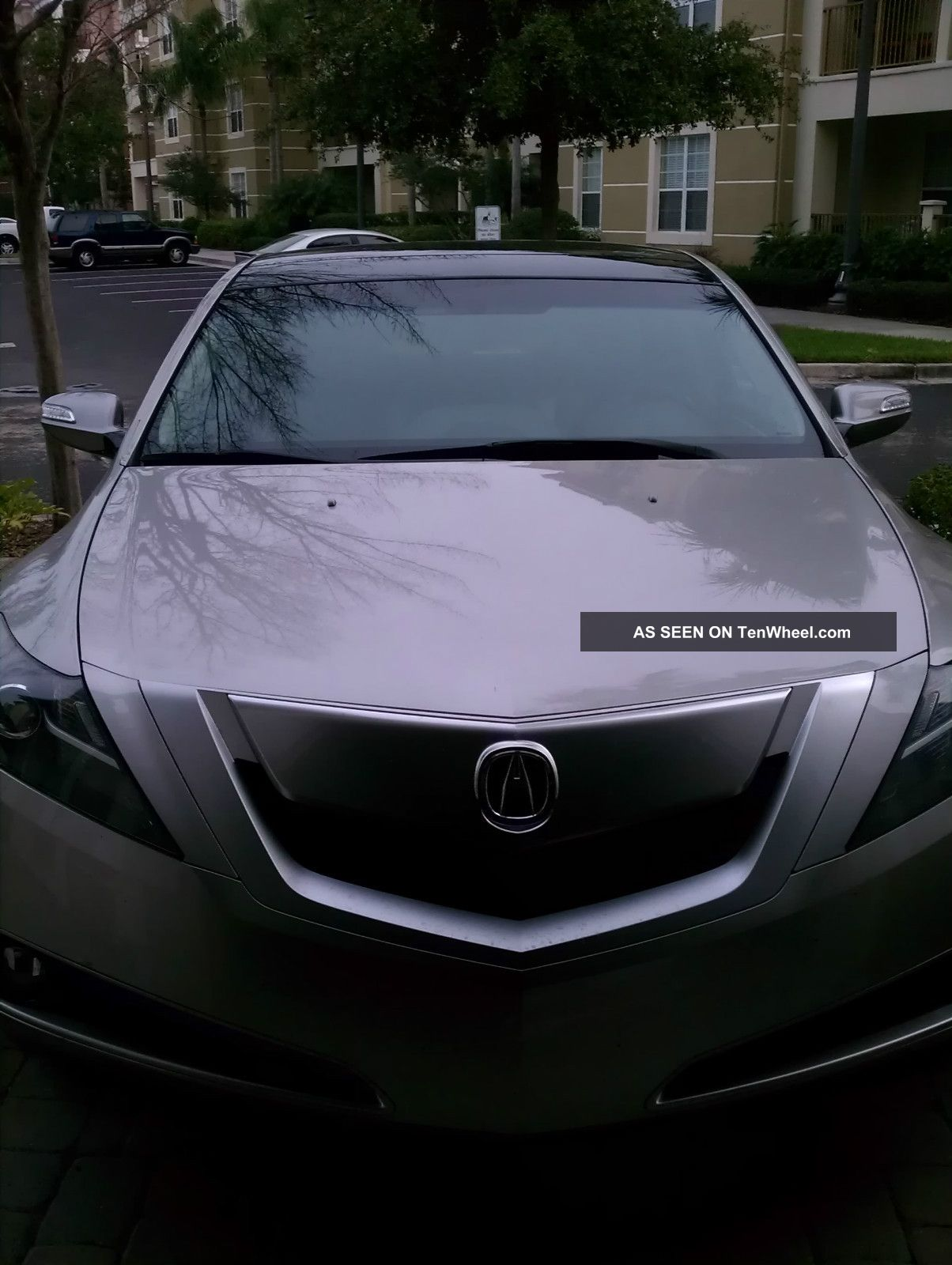 acura zdx 2010 w tech package. Black Bedroom Furniture Sets. Home Design Ideas