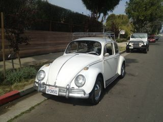 1965 Volkswagen Bug photo