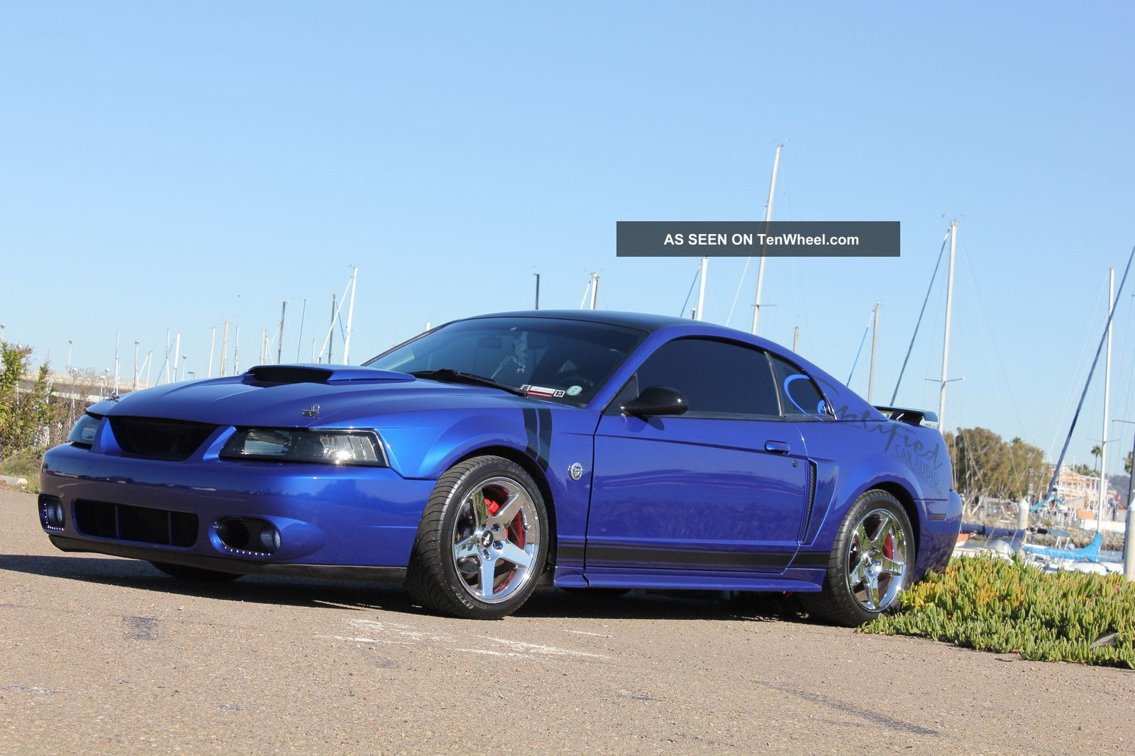 2004 Ford Mustang Gt Coupe 2 - Door 4.  6l Mustang photo
