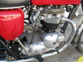 1968 Triumph Tr - 6c 650cc photo