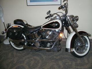 1993 Limited Edition Harley Davidson Flstn Heritage Nostalgia Softail Moo Glide photo