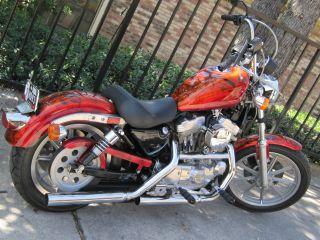 Customized 1993 Harley Davidson Sportster photo