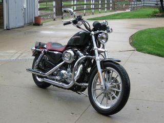 2006 Harley Davidson Sportster 883 Low photo