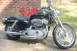 2005 Harley Davidson Xl883c photo