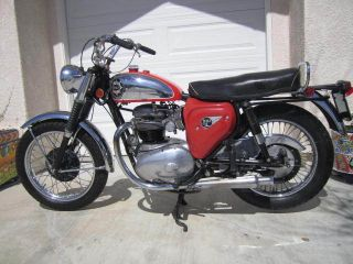 1965 Bsa 500 Twin Cyclone 1 Year Us Only Rare` photo