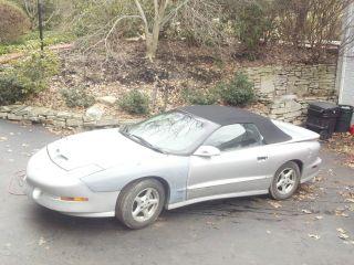 1997 Pontiac Trans Am Convertible photo
