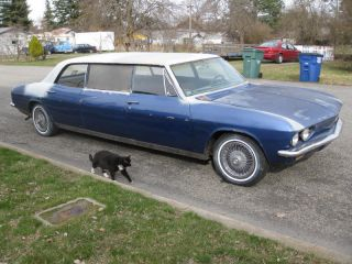 1966 Chevy Corvair Limousine photo