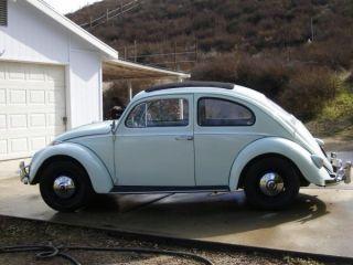 1961 Ragtop Vw Beetle photo