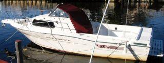 1994 Sea Sprite 2350 photo