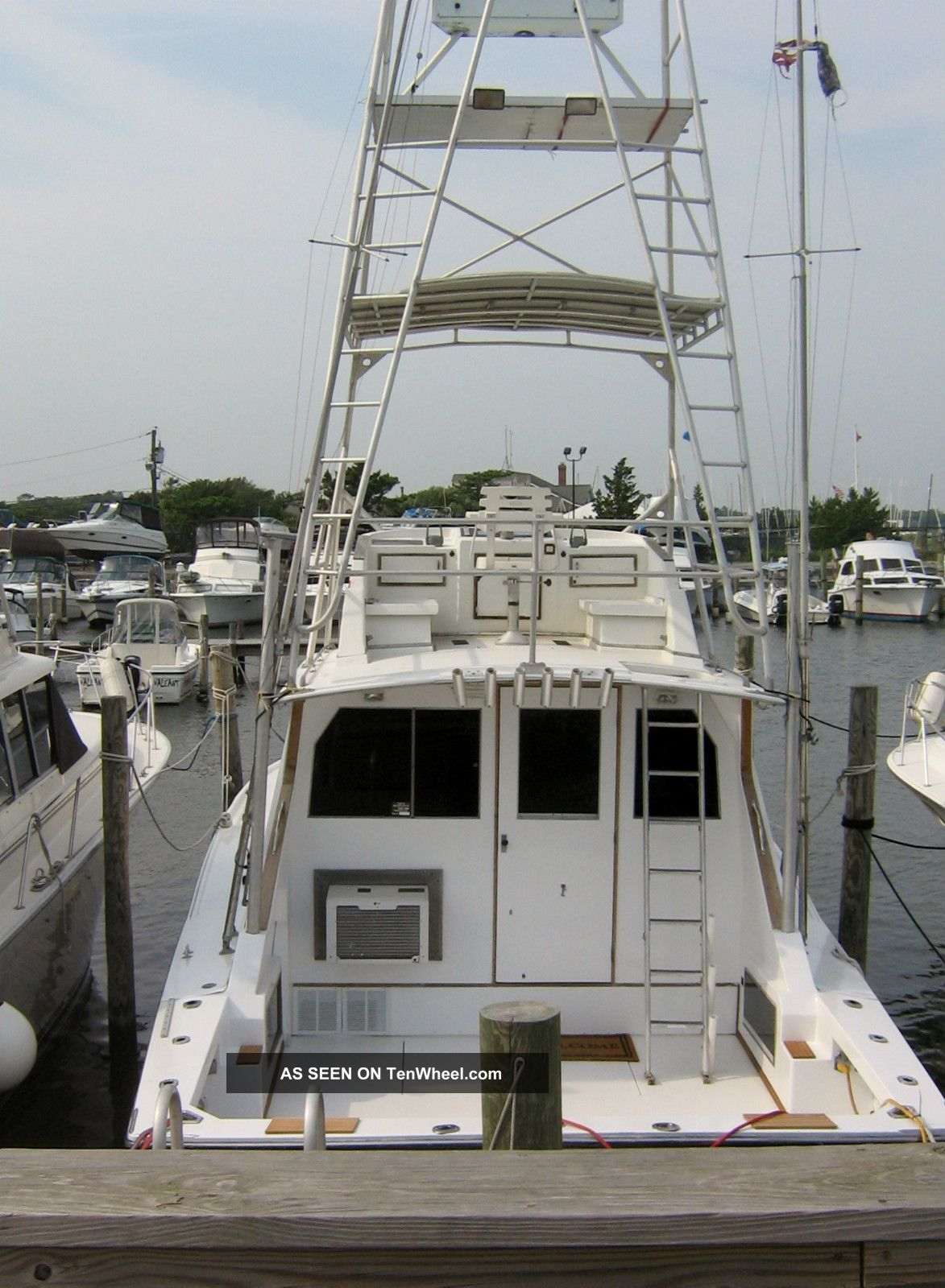 1965 Bertram 38 Offshore Saltwater Fishing photo