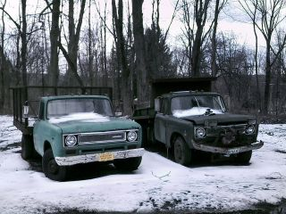 Model 1310 Rack Truck,  And Model 1310 Dumper,  Both Year 1971 Running photo