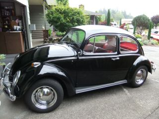 1966 Vw Beetle 1300 Volkswagon Bug 2 Door Black photo