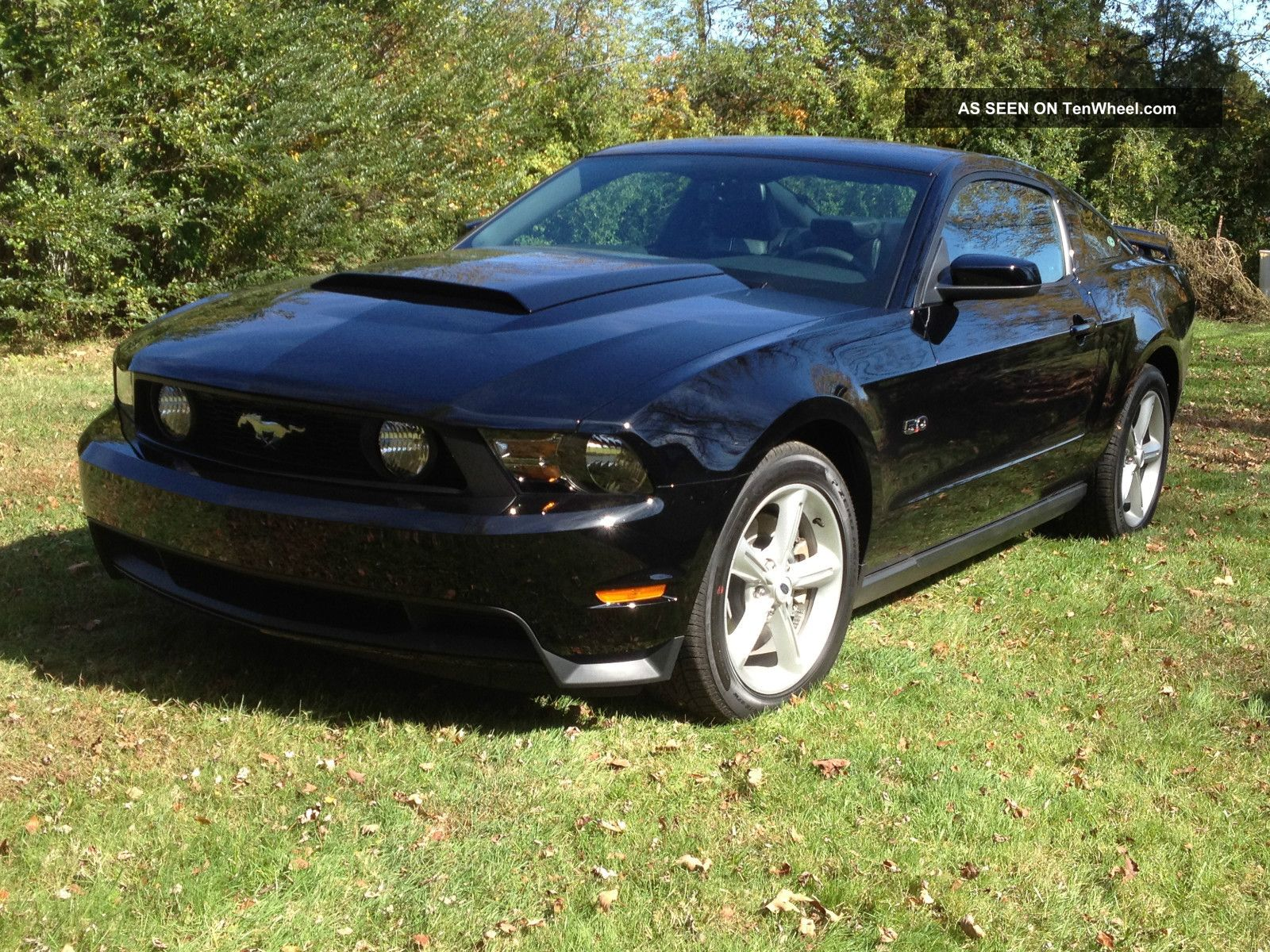 2012 ford mustang gt premium 5 0 sync shaker. Black Bedroom Furniture Sets. Home Design Ideas