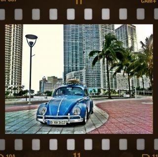 1962 Vw Beetle Hood Ride photo