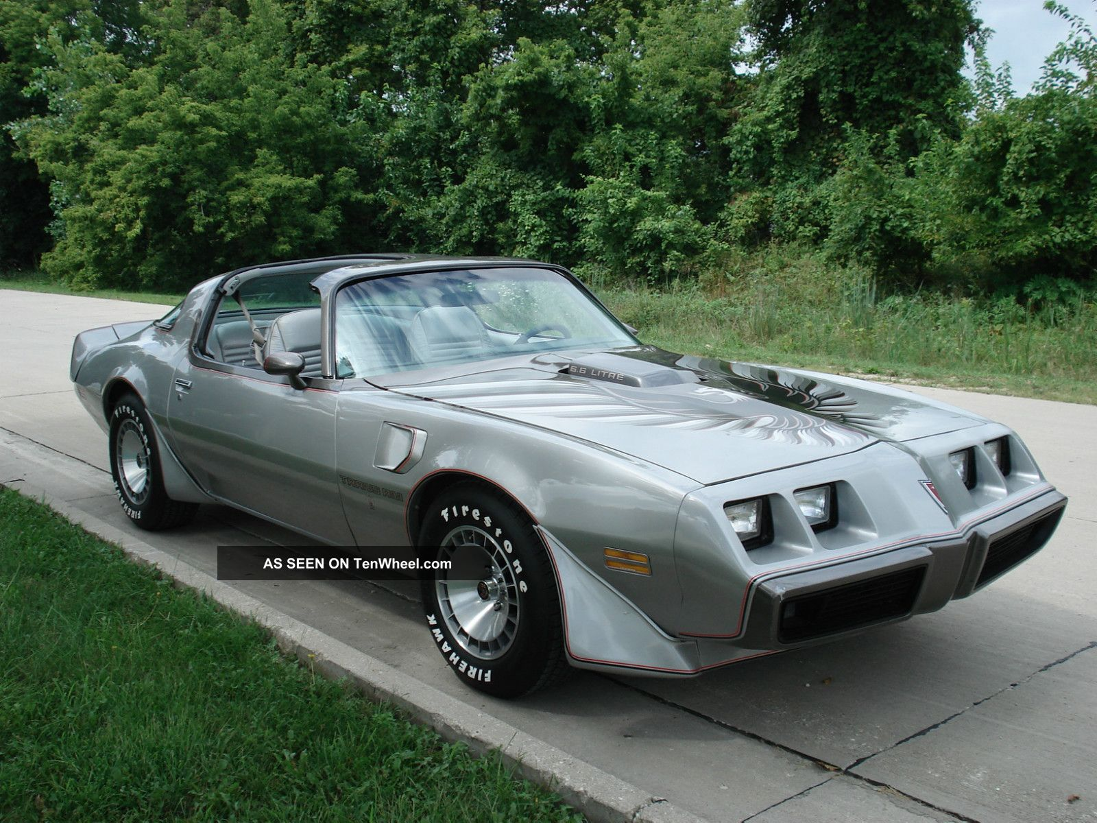 1979 Trans Am 10th Anniversery