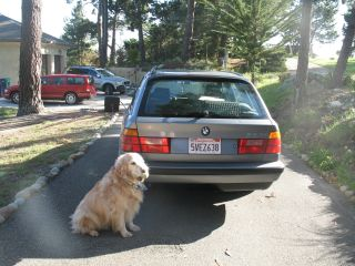 1992 Bmw 5 Series 525 I Touring Wagon 2nd Owner photo
