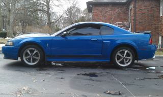 2003 Ford Mustang Mach I W / Extras photo