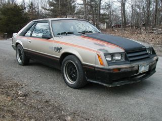 1979 Ford Mustang Indy Pace Car 302 5 Spd 8.  8 Rear Hot Rod Classic Collector Car photo